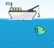 Pescuit In Ocean