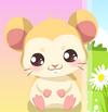 Jocuri cu Hamsteri De Ingrijit