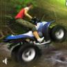 ATV in Padure